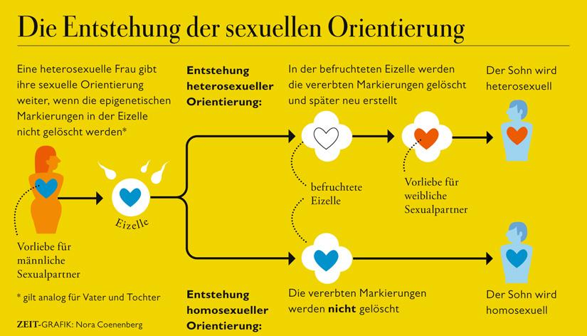 test zur sexuellen orientierung