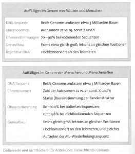 genom_vergleich